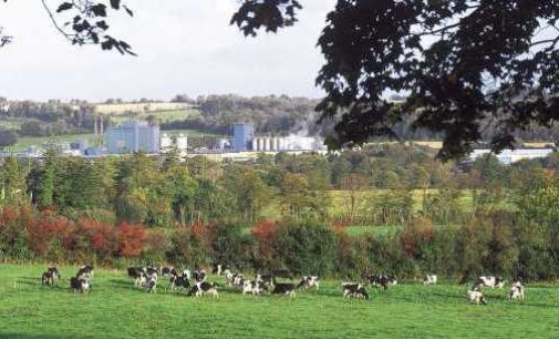 New Chief Executive For Carbery Group