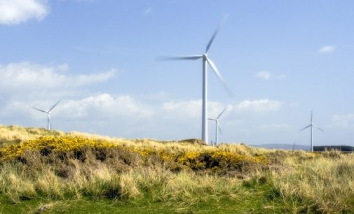 Cabinet Approval For Renewable Electricity Support Scheme (RESS)