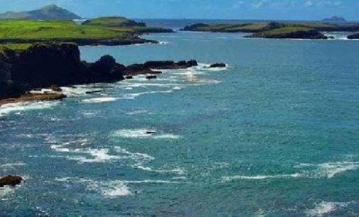 Bio-marine Ingredients Ireland Welcomes Significant Enterprise Ireland Support