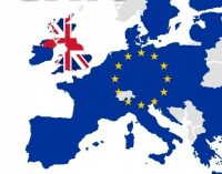 British Irish Chamber welcomes UK Government announcement to delay import controls for EU goods