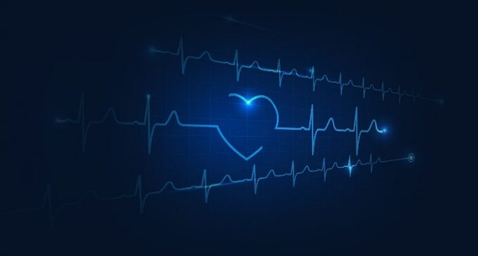 UCD Partnering in New €8.2 Million Cross Border Research Centre to Improve Cardiovascular Care