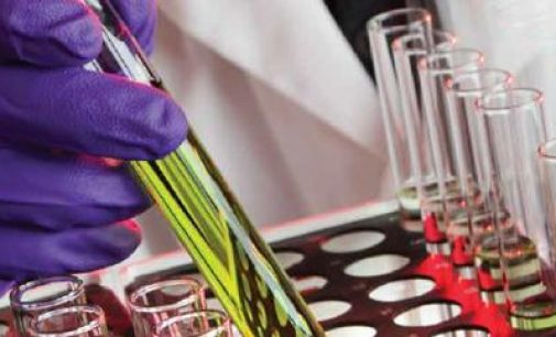 Teagasc Joint 5th Among Research Organisations in Europe