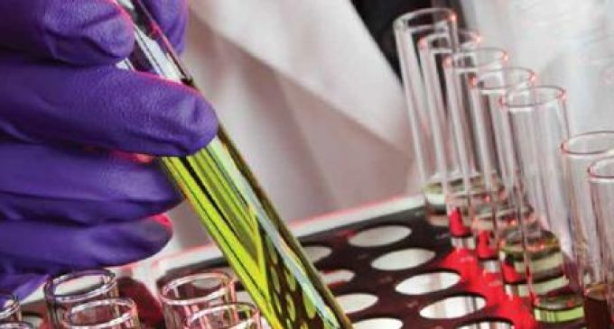 Teagasc Announces New Programme For Future Research Leaders