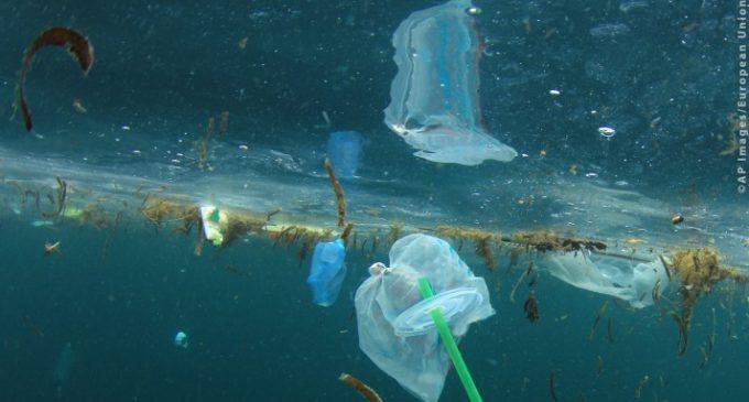EU Ban on Throwaway Plastics By 2021