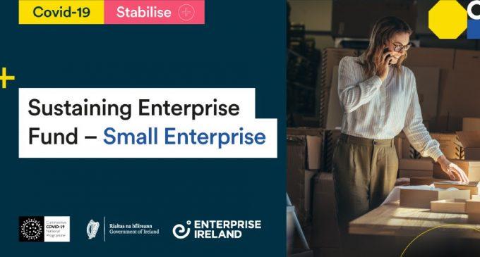 Enterprise Ireland launches Sustaining Enterprise Fund for Small Enterprise