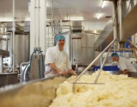 Saputo to expand its position in the UK and abroad with £23 million acquisition